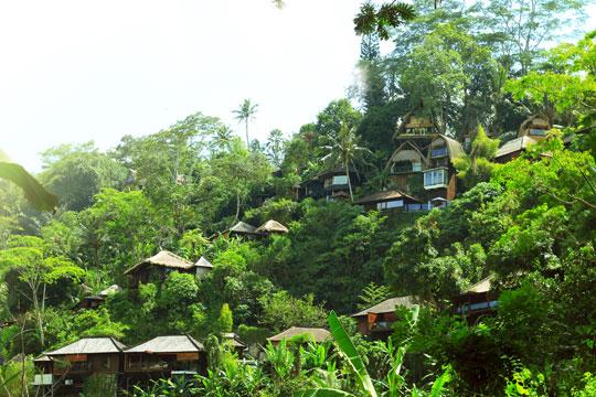 ジャングル・リトリート・ウブドのホテル詳細