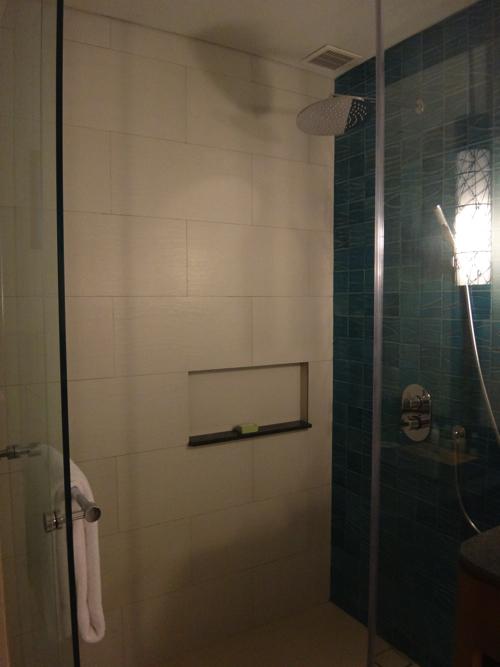 ファミリールーム シャワー1